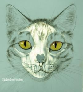 Hocker catskull