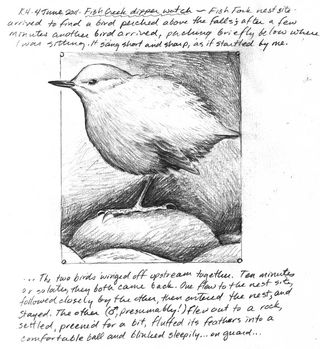 Hocker-dipper-sketch-2