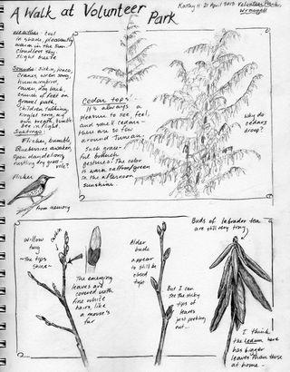 Wrangell-park-sketch-hocker