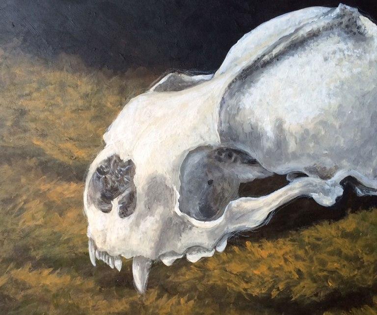 hocker-mossskull-in-progress